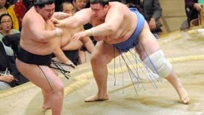 Даниел Иванов спечели първи успех на турнира по сумо в Токио